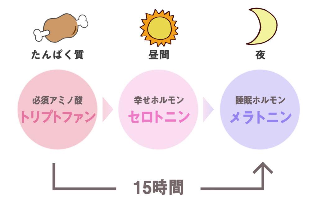 トリプトファンの変化過程の図
