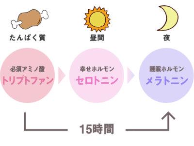たんぱく質を摂っていい睡眠を。快眠効果を高める食べ方は?