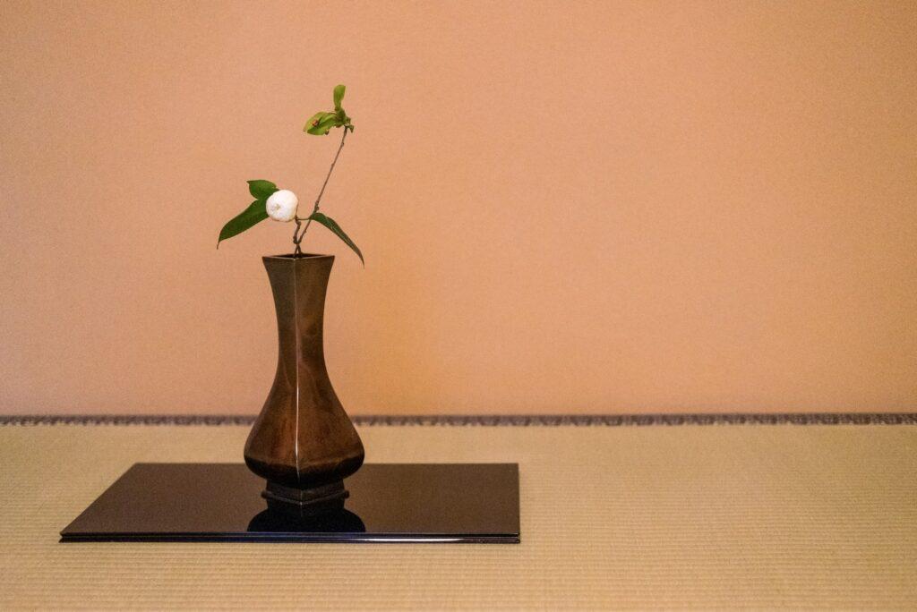 茶花の写真